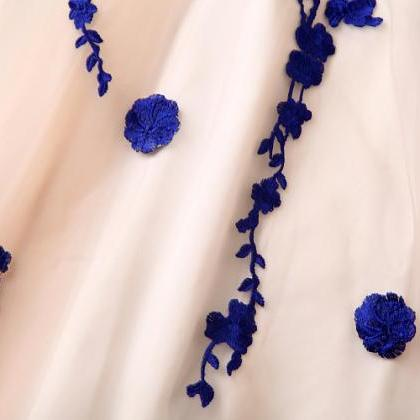 Embroidered Lace Dress InBlue